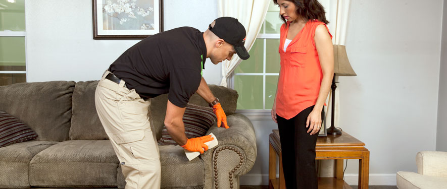 Toronto, ON carpet upholstery cleaning
